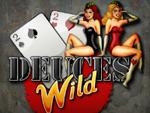 Play Deuces Wild 1 Hand Now!